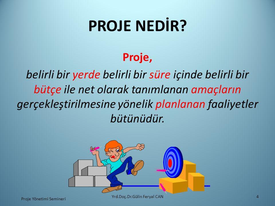 PROJE YÖNETİCİSİNİN ROLÜ Yrd.Doç.Dr.Gülin Feryal CAN25 Proje Yönetimi Semineri Her proje yöneticisi Pazartesi sabahı problemlerle karşılaşır.