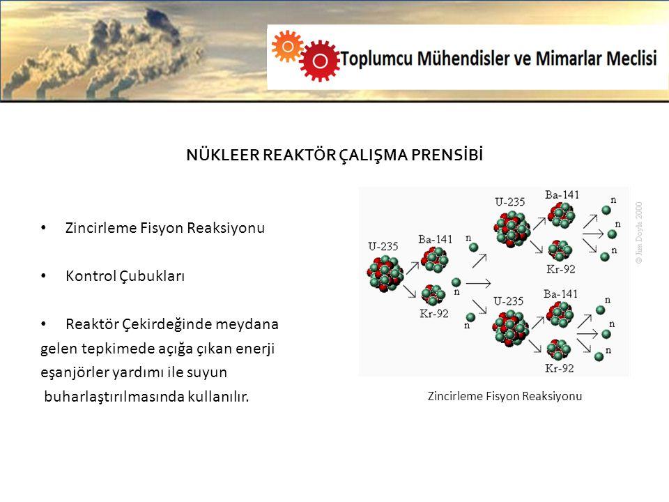 Olası bir nükleer patlamada etrafa yayılan elementleri kısaca incelemek gerekirse; Stronsiyum 90 kalsiyumu aynen taklit ediyor.