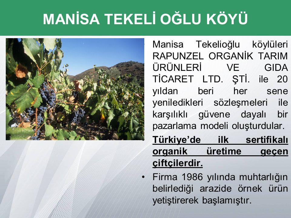 Manisa Tekelioğlu köylüleri RAPUNZEL ORGANİK TARIM ÜRÜNLERİ VE GIDA TİCARET LTD.