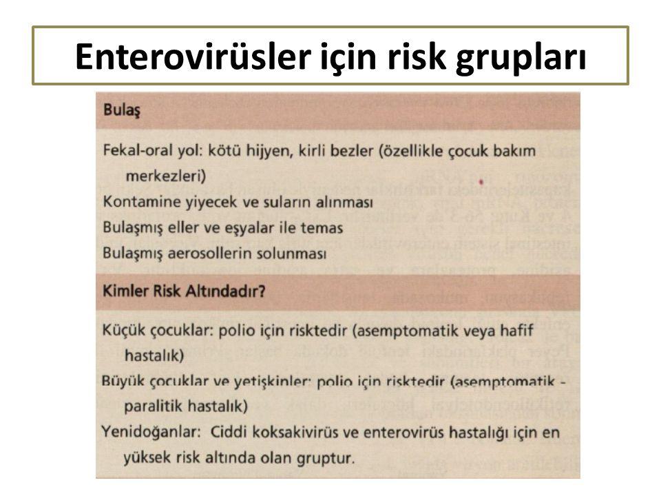 Enterovirüsler için risk grupları