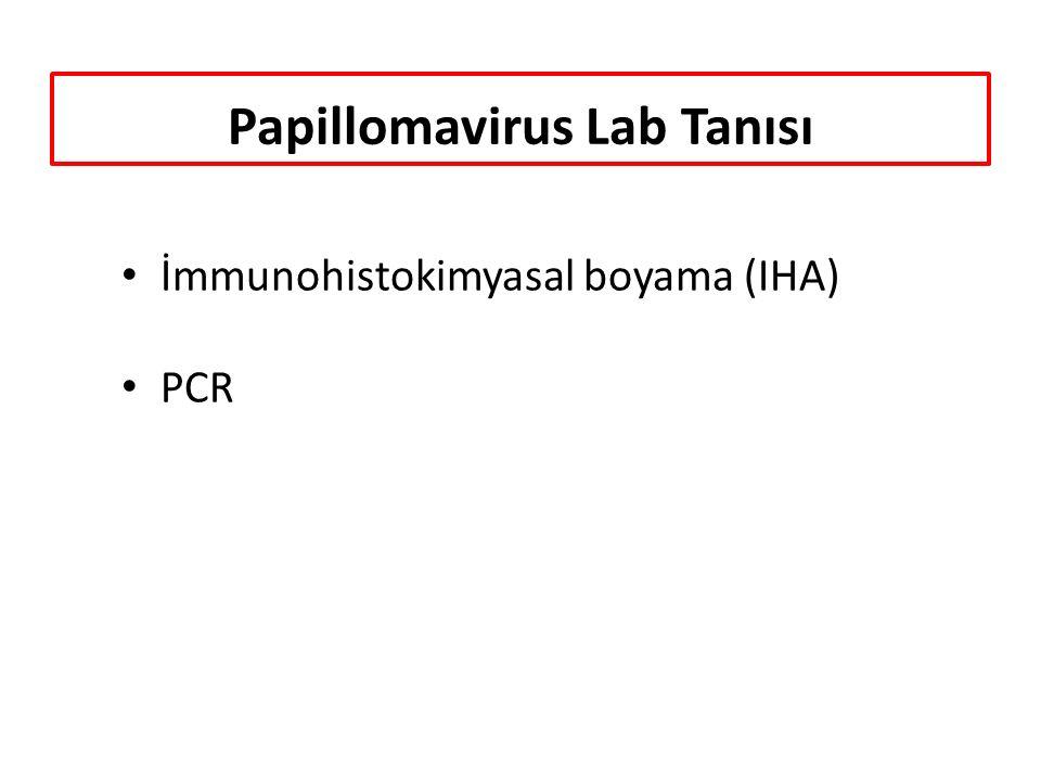 Papillomavirus Lab Tanısı İmmunohistokimyasal boyama (IHA) PCR
