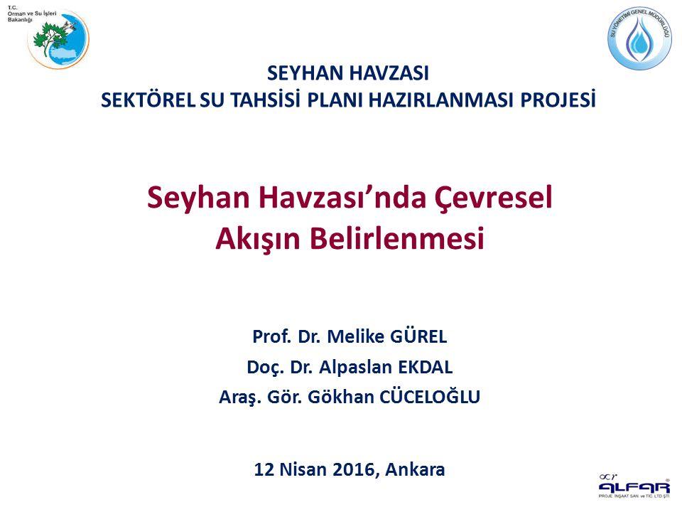 SEYHAN HAVZASI SEKTÖREL SU TAHSİSİ PLANI HAZIRLANMASI PROJESİ Prof.