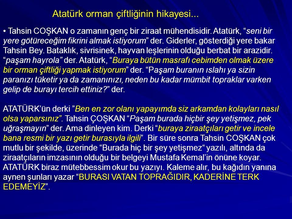 Hadi gelin Söğütözü'ne gidelim, hani şu Ankara yakınlarındaki, o zaman için 80 tane söğüt ağacının olduğu yere.