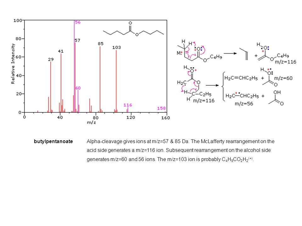 butylpentanoateAlpha-cleavage gives ions at m/z=57 & 85 Da.
