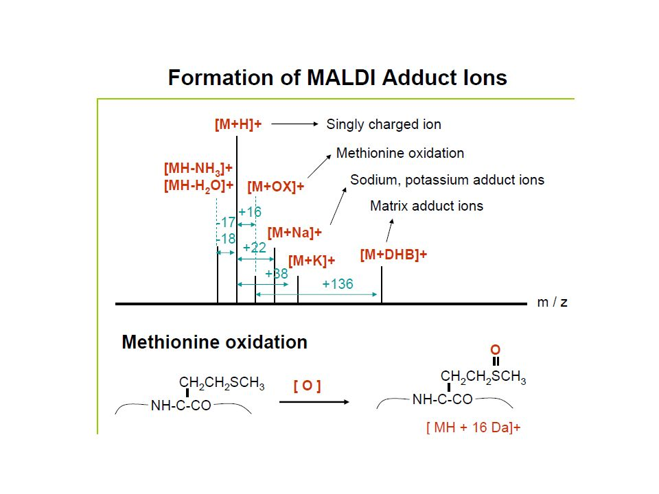 Commonly used MALDI Matrices: