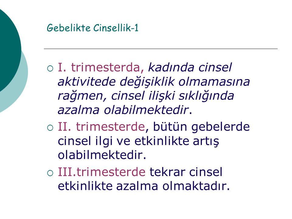 Gebelikte Cinsellik-1  I.