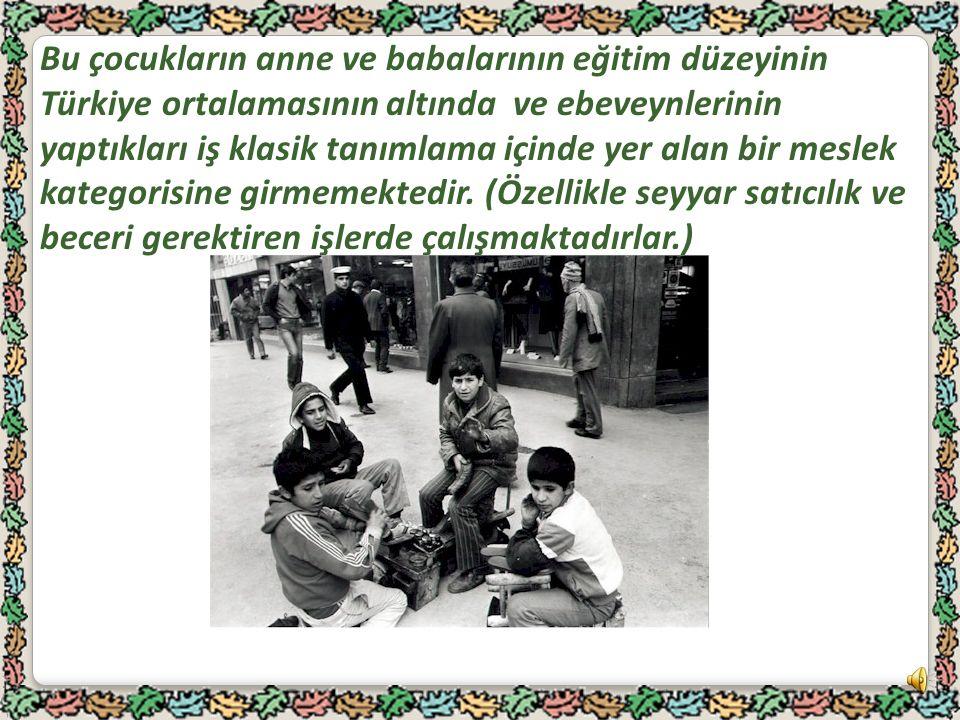 Bu çocukların anne ve babalarının eğitim düzeyinin Türkiye ortalamasının altında ve ebeveynlerinin yaptıkları iş klasik tanımlama içinde yer alan bir meslek kategorisine girmemektedir.