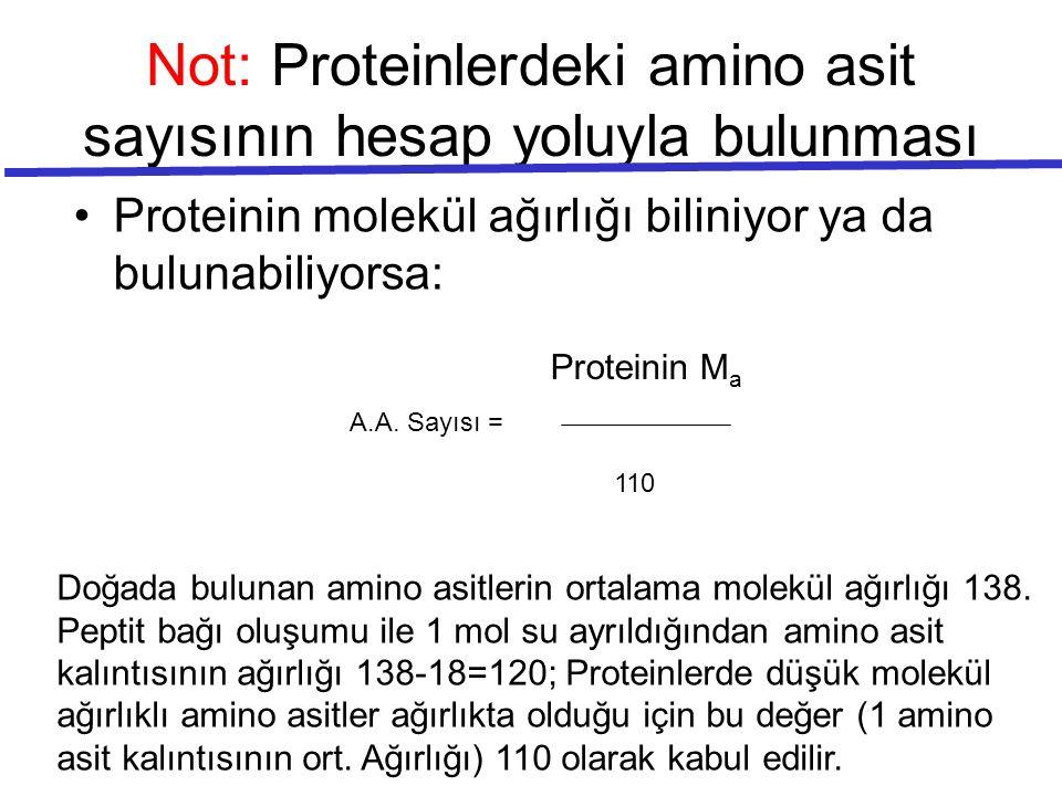 Not: Proteinlerdeki amino asit sayısının hesap yoluyla bulunması Proteinin molekül ağırlığı biliniyor ya da bulunabiliyorsa: A.A. Sayısı = Proteinin M