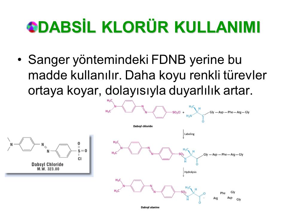 DABSİL KLORÜR KULLANIMI Sanger yöntemindeki FDNB yerine bu madde kullanılır. Daha koyu renkli türevler ortaya koyar, dolayısıyla duyarlılık artar.