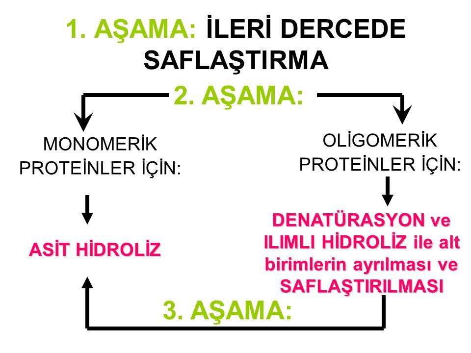 Not: Proteinlerdeki amino asit sayısının hesap yoluyla bulunması Proteinin molekül ağırlığı biliniyor ya da bulunabiliyorsa: A.A.