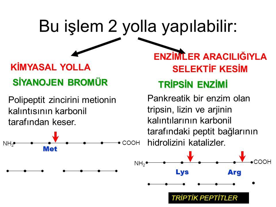 Bu işlem 2 yolla yapılabilir: KİMYASAL YOLLA ENZİMLER ARACILIĞIYLA SELEKTİF KESİM SİYANOJEN BROMÜR TRİPSİN ENZİMİ Polipeptit zincirini metionin kalınt