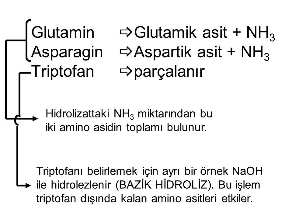 Glutamin  Glutamik asit + NH 3 Asparagin  Aspartik asit + NH 3 Triptofan  parçalanır Triptofanı belirlemek için ayrı bir örnek NaOH ile hidrolezlen