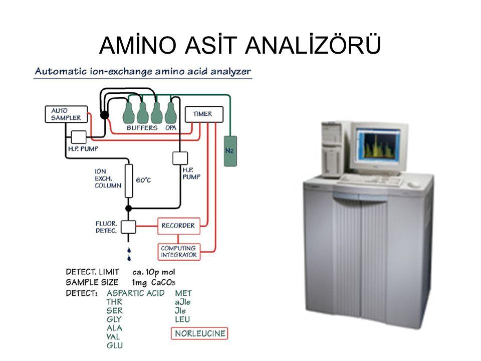 SON AŞAMA: KANTİTATİF ANALİZ Amino asit + Ninhidrin reaktifi Mor renkli bileşikler (Prolin amino asidi ile sarı renkli bileşik) Bu maddelerin absorpladığı ışık miktarı spektral yöntemle ölçülür.