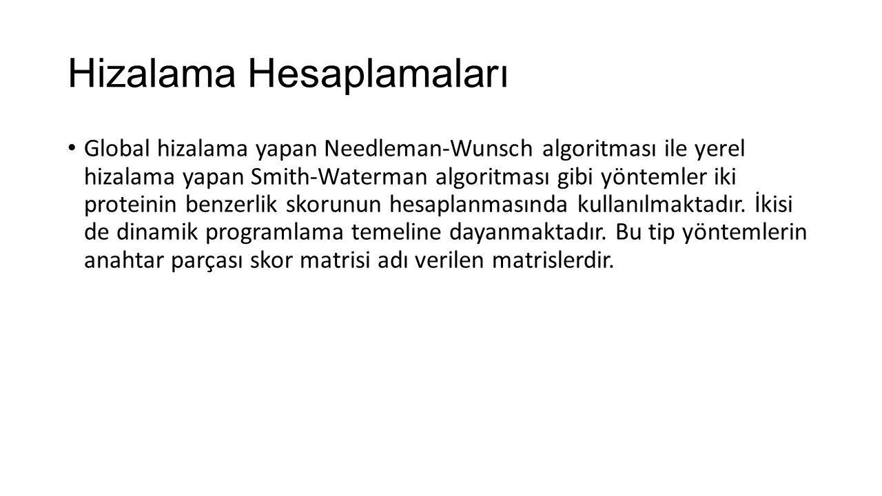 Hizalama Hesaplamaları Global hizalama yapan Needleman‐Wunsch algoritması ile yerel hizalama yapan Smith‐Waterman algoritması gibi yöntemler iki prote