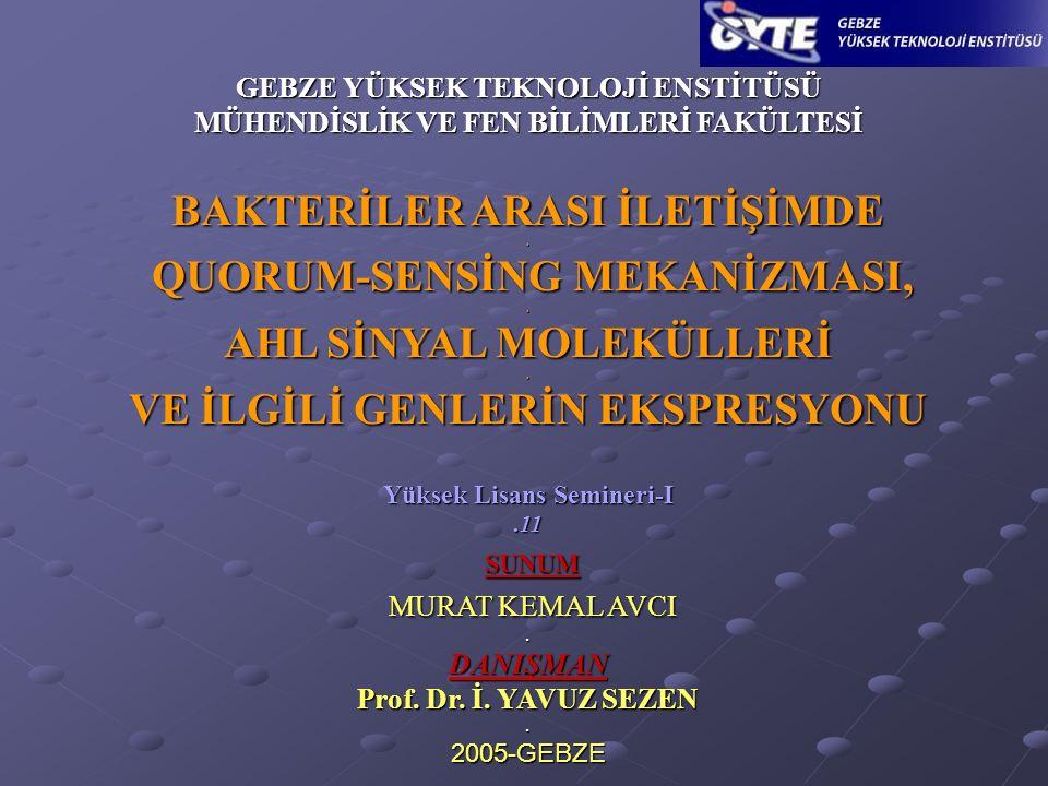 2 Murat Kemal AVCI_GYTE www.quorumsensing.netwww.quorumsensing.net Kasım_2005 ﻬ 1.