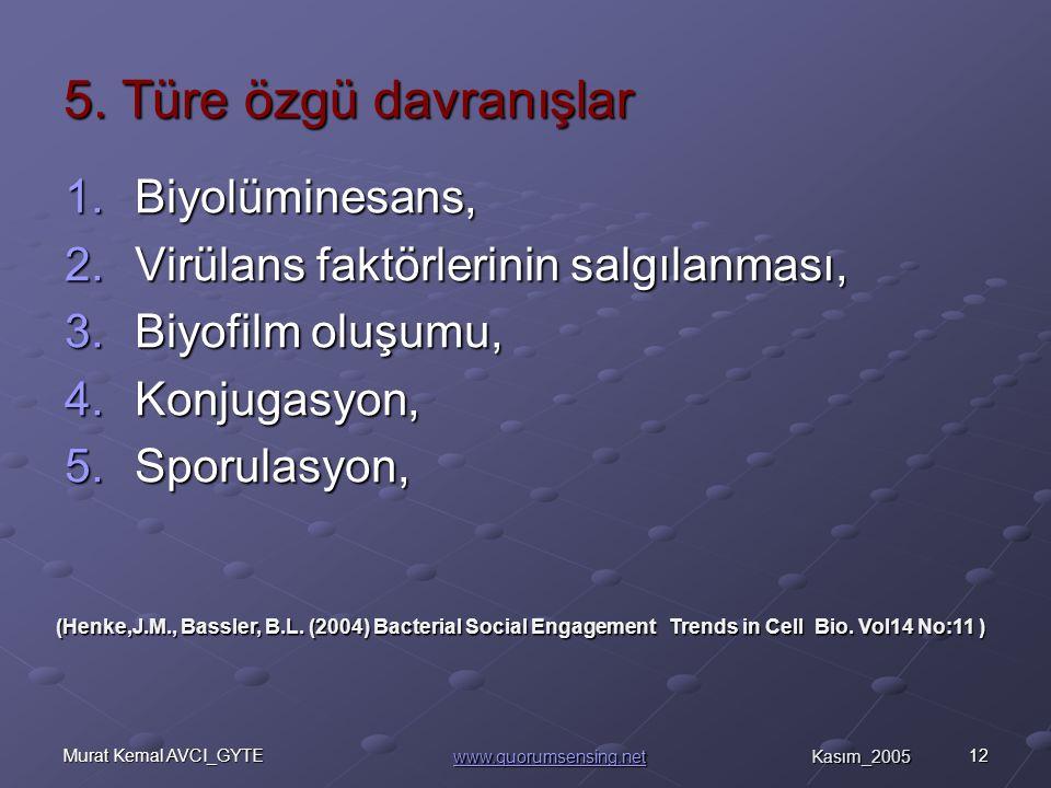12Murat Kemal AVCI_GYTE 5.
