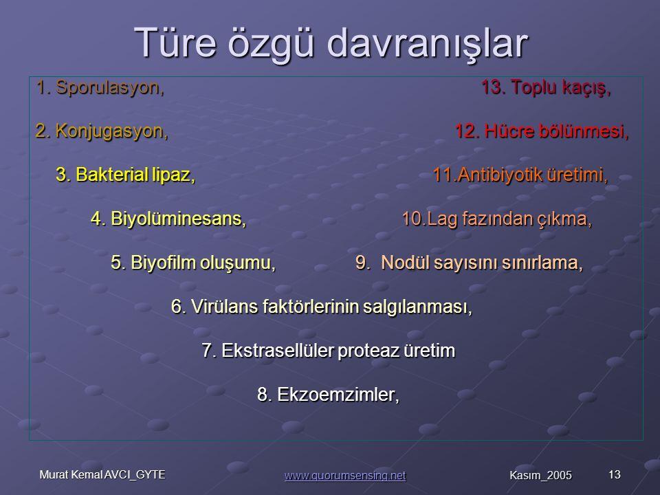 13Murat Kemal AVCI_GYTE Türe özgü davranışlar 1.Sporulasyon, 13.