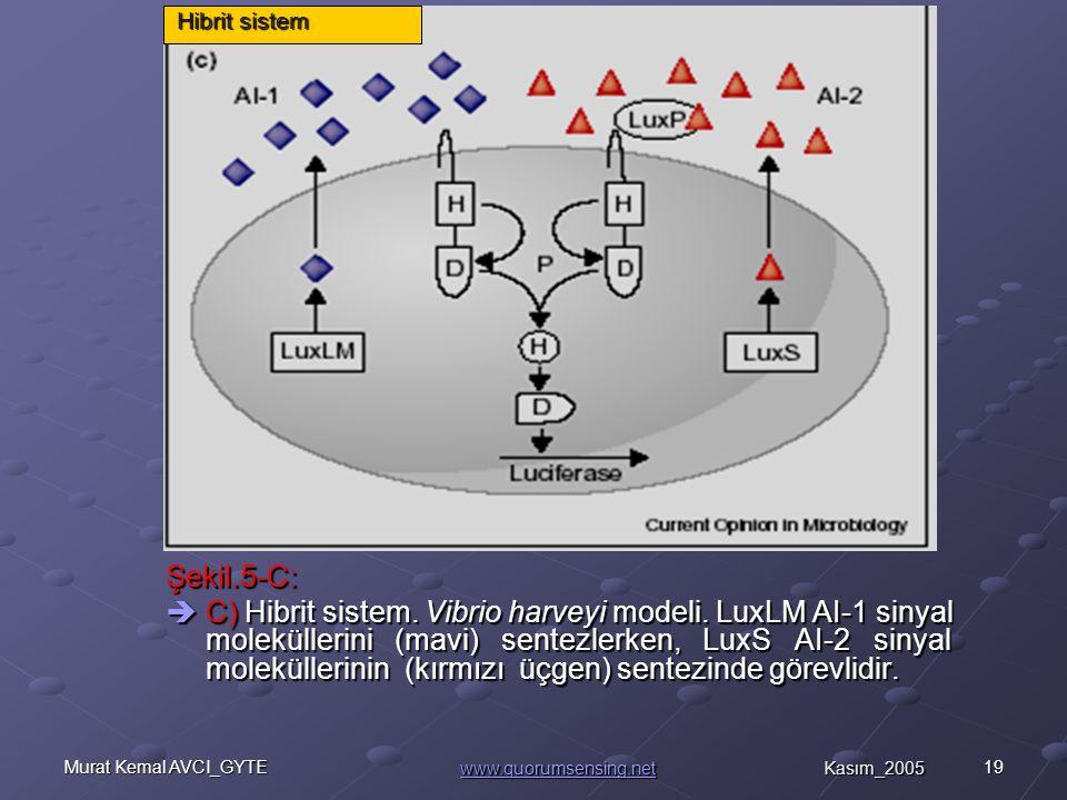 19Murat Kemal AVCI_GYTE Şekil.5-C:  C) Hibrit sistem.
