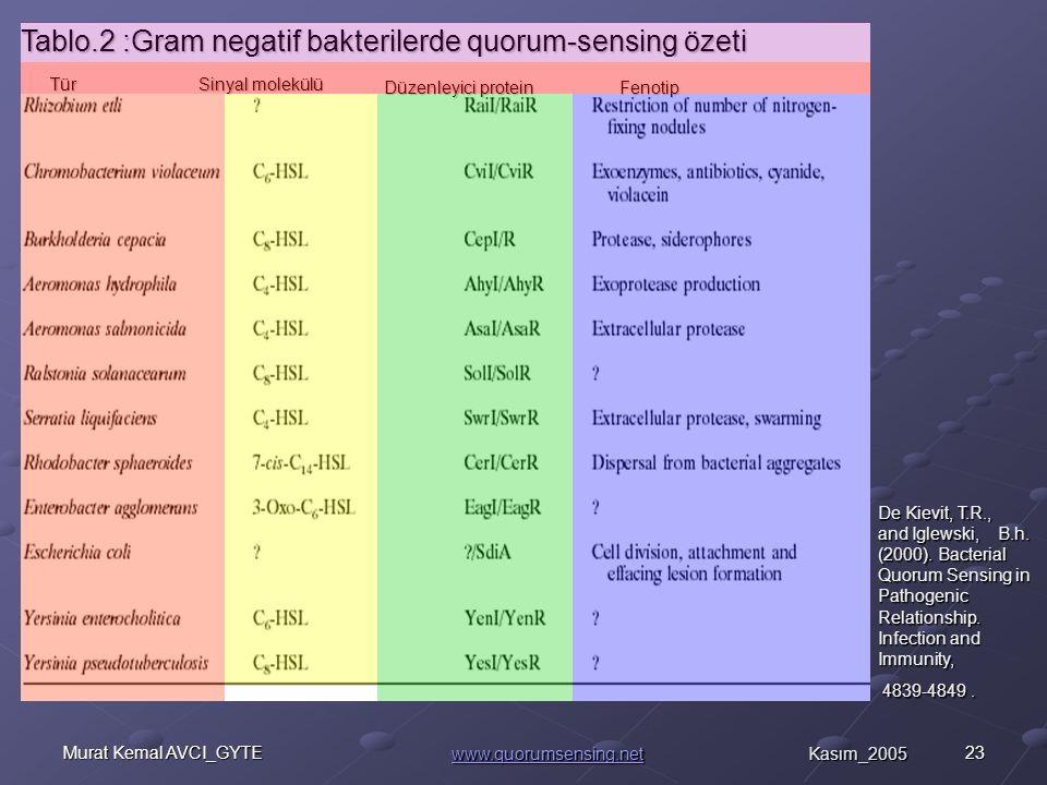 23Murat Kemal AVCI_GYTE Tablo.2 :Gram negatif bakterilerde quorum-sensing özeti Sinyal molekülü Düzenleyici protein Düzenleyici protein Tür Tür Fenotip Fenotip De Kievit, T.R., and Iglewski, B.h.