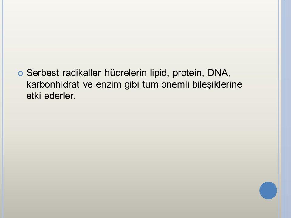 Serbest radikaller hücrelerin lipid, protein, DNA, karbonhidrat ve enzim gibi tüm önemli bileşiklerine etki ederler.