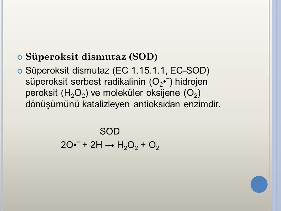 Süperoksit dismutaz (SOD) Süperoksit dismutaz (EC 1.15.1.1, EC-SOD) süperoksit serbest radikalinin (O 2 ‾) hidrojen peroksit (H 2 O 2 ) ve moleküler o