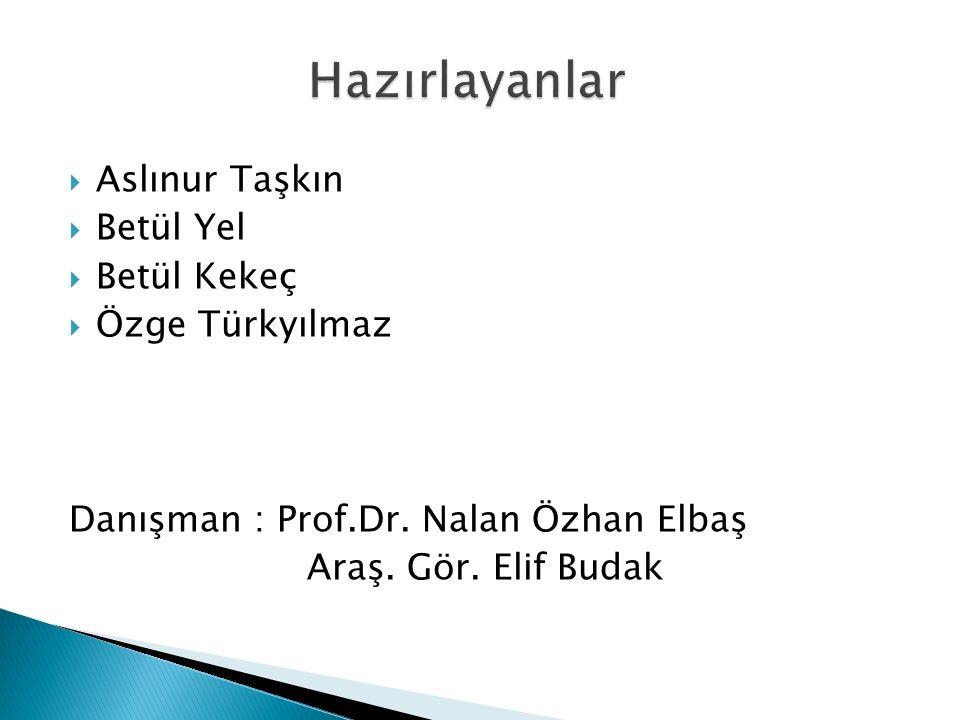  Aslınur Taşkın  Betül Yel  Betül Kekeç  Özge Türkyılmaz Danışman : Prof.Dr. Nalan Özhan Elbaş Araş. Gör. Elif Budak