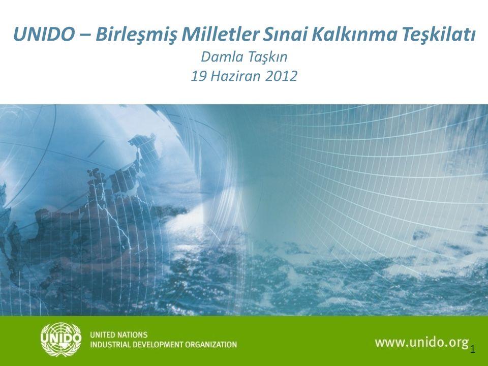 1 UNIDO – Birleşmiş Milletler Sınai Kalkınma Teşkilatı Damla Taşkın 19 Haziran 2012