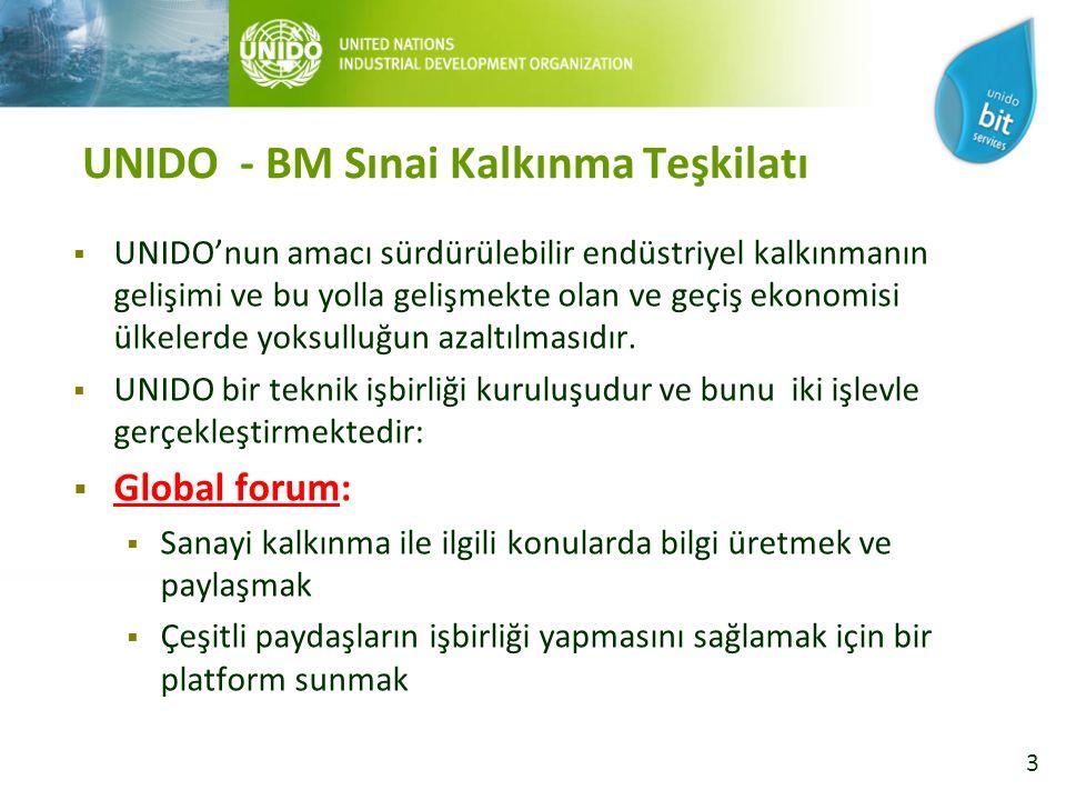 3 UNIDO - BM Sınai Kalkınma Teşkilatı  UNIDO'nun amacı sürdürülebilir endüstriyel kalkınmanın gelişimi ve bu yolla gelişmekte olan ve geçiş ekonomisi ülkelerde yoksulluğun azaltılmasıdır.