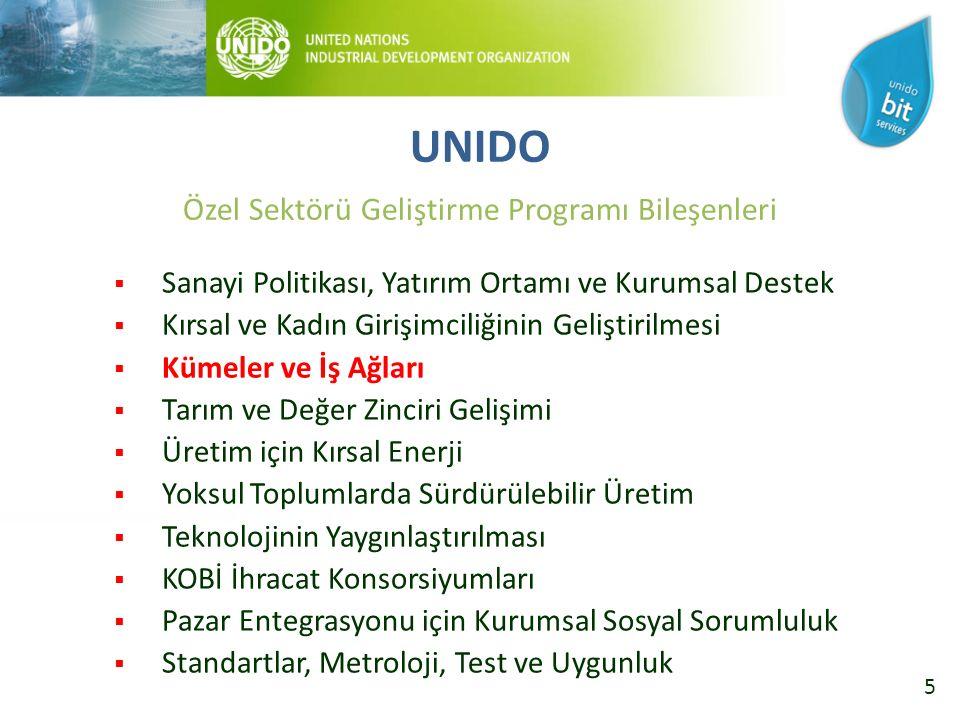 5  Sanayi Politikası, Yatırım Ortamı ve Kurumsal Destek  Kırsal ve Kadın Girişimciliğinin Geliştirilmesi  Kümeler ve İş Ağları  Tarım ve Değer Zinciri Gelişimi  Üretim için Kırsal Enerji  Yoksul Toplumlarda Sürdürülebilir Üretim  Teknolojinin Yaygınlaştırılması  KOBİ İhracat Konsorsiyumları  Pazar Entegrasyonu için Kurumsal Sosyal Sorumluluk  Standartlar, Metroloji, Test ve Uygunluk UNIDO Özel Sektörü Geliştirme Programı Bileşenleri