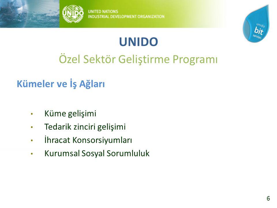 27 Ortak Program İçerisinde UNIDO Aktiviteleri Kümelenme Bileşeni 4 pilot ilde Tekstil Kümesinin gelişimini hedefler Çevre Bileşeni Çevre ve Verimlilik konularında danışmanlık, eğitim, raporlama çalışmaları Kurumsal Sosyal Sorumluluk Bileşeni KSS konusunda danışmanlık, eğitim, raporlama çalışmaları UNIDO Özel Sektör Geliştirme Programı