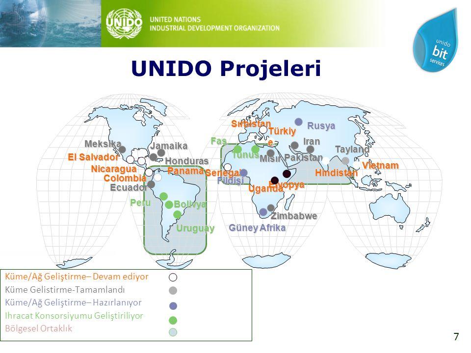 28 UNIDO Kümelenme Çalışmaları  Tekstil sektörü mevcut durum analizi  İlgili kurumların görüşlerinin alınması, sonuçların paylaşılması, önerilerde bulunulması  UNIDO Kümelenme yaklaşımının paylaşılması  Kümelenme ile ilgili eğitimler verilmesi  Küme aksiyon planlarının belirlenmesi, uygulanması UNIDO Özel Sektör Geliştirme Programı