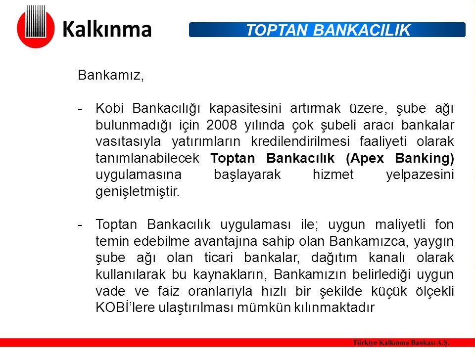Bankamız, -Kobi Bankacılığı kapasitesini artırmak üzere, şube ağı bulunmadığı için 2008 yılında çok şubeli aracı bankalar vasıtasıyla yatırımların kredilendirilmesi faaliyeti olarak tanımlanabilecek Toptan Bankacılık (Apex Banking) uygulamasına başlayarak hizmet yelpazesini genişletmiştir.