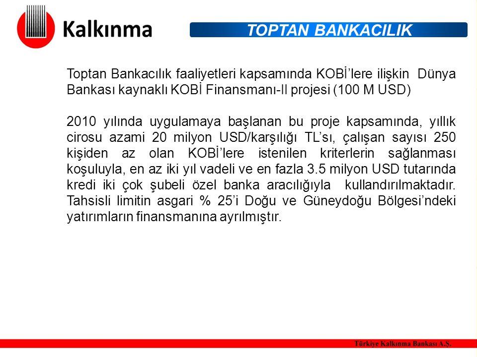Toptan Bankacılık faaliyetleri kapsamında KOBİ'lere ilişkin Dünya Bankası kaynaklı KOBİ Finansmanı-II projesi (100 M USD) 2010 yılında uygulamaya başlanan bu proje kapsamında, yıllık cirosu azami 20 milyon USD/karşılığı TL'sı, çalışan sayısı 250 kişiden az olan KOBİ'lere istenilen kriterlerin sağlanması koşuluyla, en az iki yıl vadeli ve en fazla 3.5 milyon USD tutarında kredi iki çok şubeli özel banka aracılığıyla kullandırılmaktadır.