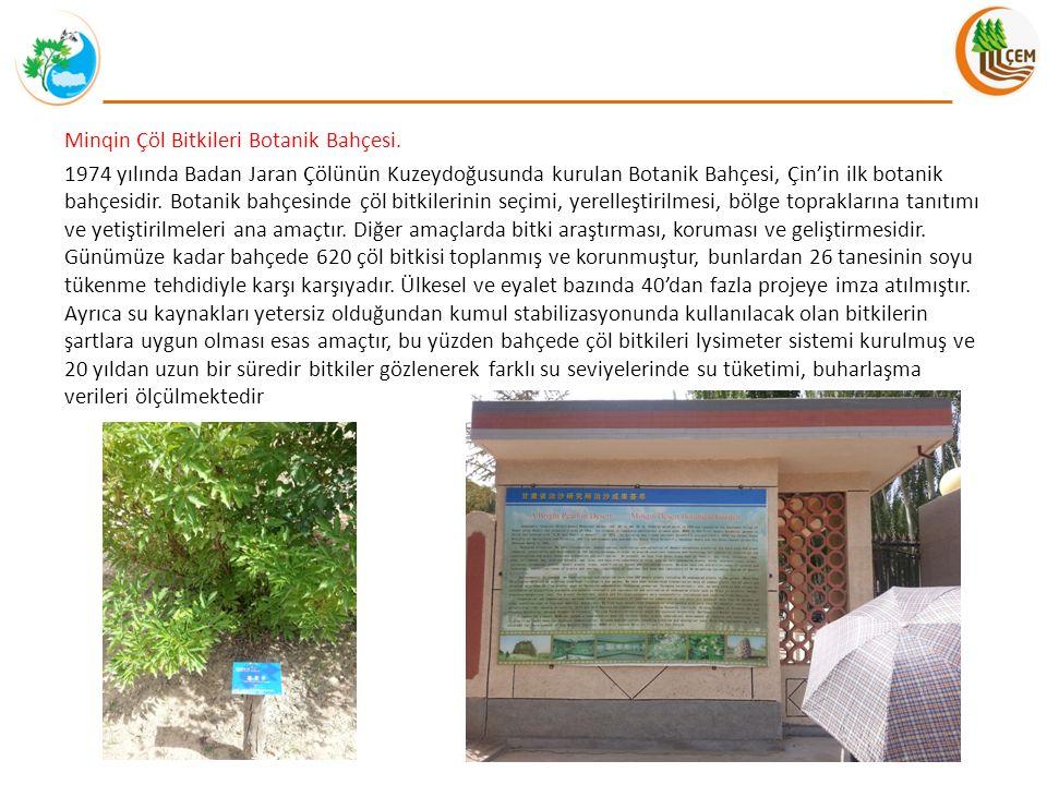 Minqin Çöl Bitkileri Botanik Bahçesi. 1974 yılında Badan Jaran Çölünün Kuzeydoğusunda kurulan Botanik Bahçesi, Çin'in ilk botanik bahçesidir. Botanik
