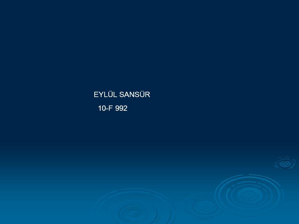 EYLÜL SANSÜR 10-F 992