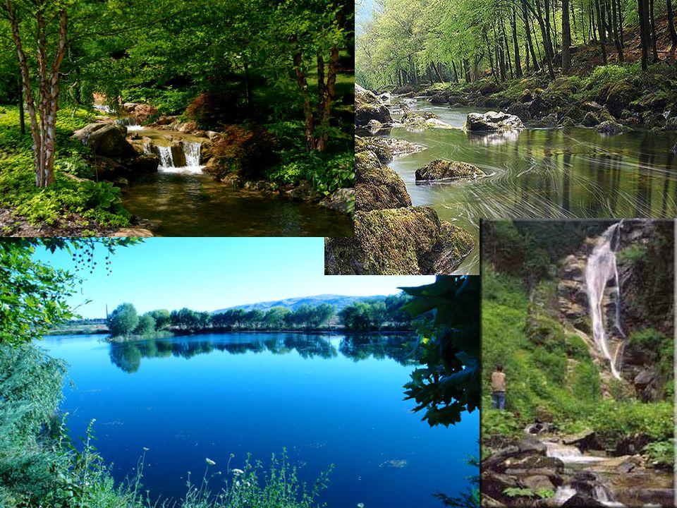 GÖLLERDEN YARARLANMA Baraj Göllerinden Yararlanma: * İçme ve kullanma suyu olarak * Enerji üretimi * Tatlı su ürünleri elde etme * Taşkınlardan korunmada yararlanırız.