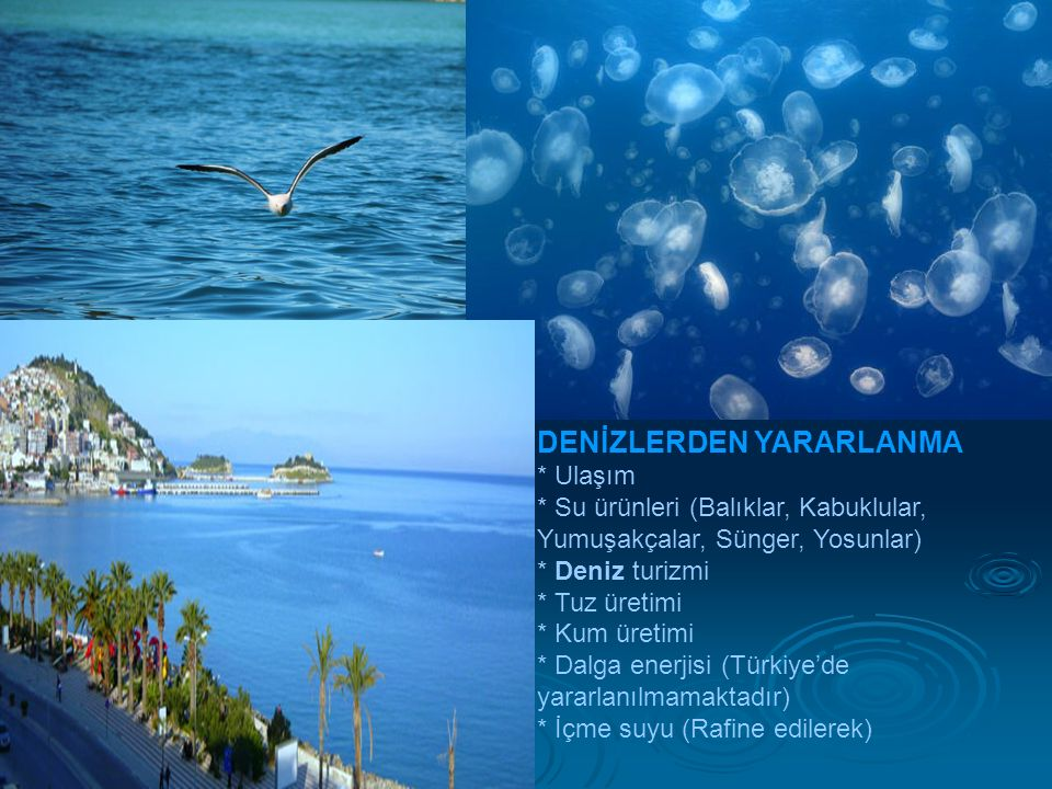 DENİZLERDEN YARARLANMA * Ulaşım * Su ürünleri (Balıklar, Kabuklular, Yumuşakçalar, Sünger, Yosunlar) * Deniz turizmi * Tuz üretimi * Kum üretimi * Dalga enerjisi (Türkiye'de yararlanılmamaktadır) * İçme suyu (Rafine edilerek)