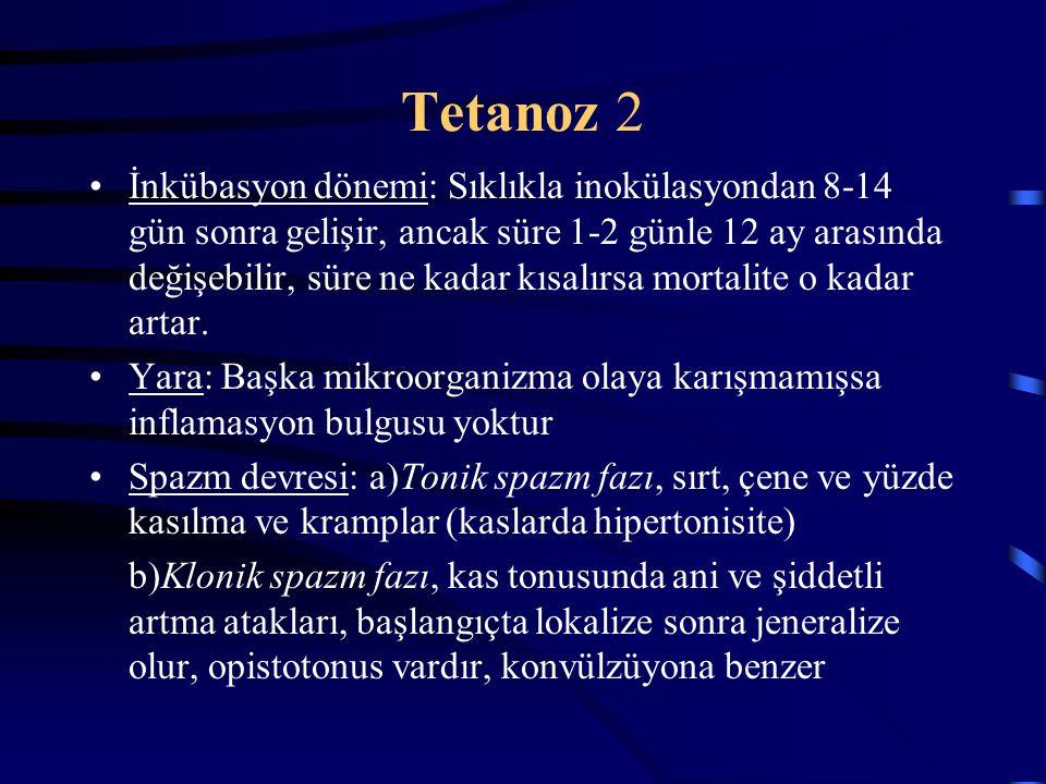 Tetanoz 2 İnkübasyon dönemi: Sıklıkla inokülasyondan 8-14 gün sonra gelişir, ancak süre 1-2 günle 12 ay arasında değişebilir, süre ne kadar kısalırsa mortalite o kadar artar.