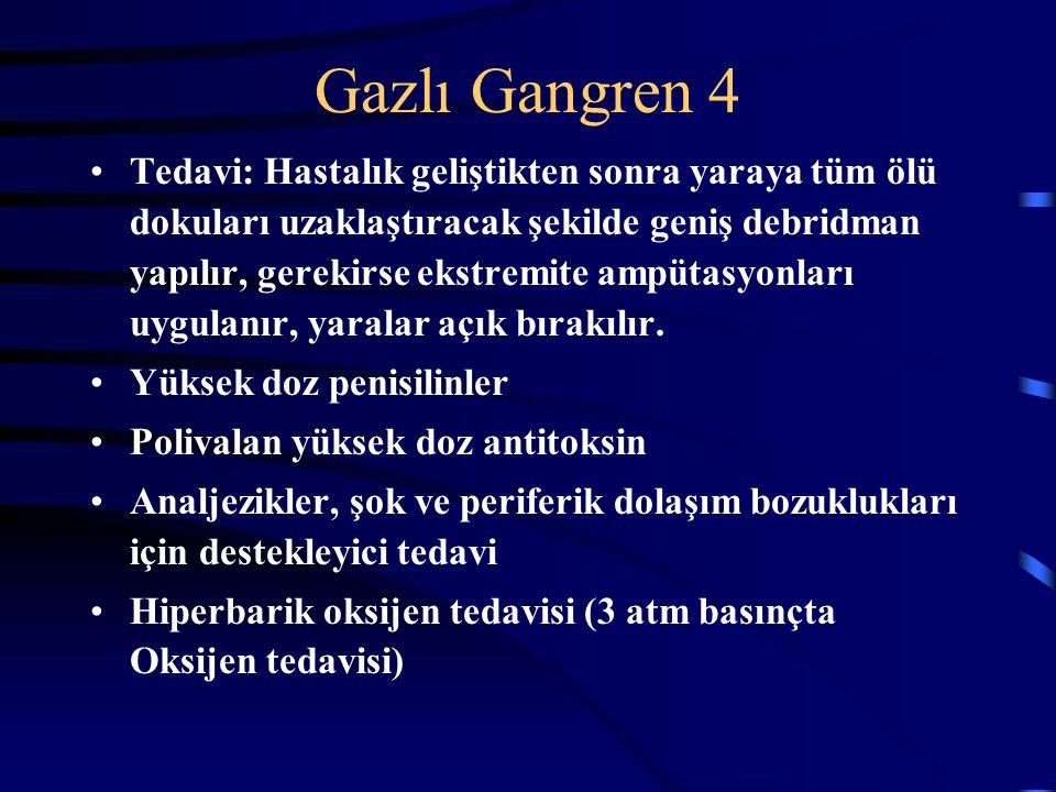 Gazlı Gangren 4 Tedavi: Hastalık geliştikten sonra yaraya tüm ölü dokuları uzaklaştıracak şekilde geniş debridman yapılır, gerekirse ekstremite ampütasyonları uygulanır, yaralar açık bırakılır.
