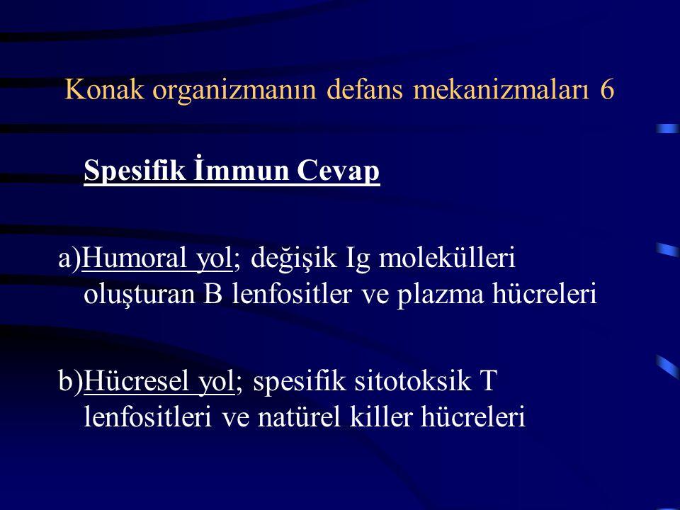 Konak organizmanın defans mekanizmaları 6 Spesifik İmmun Cevap a)Humoral yol; değişik Ig molekülleri oluşturan B lenfositler ve plazma hücreleri b)Hücresel yol; spesifik sitotoksik T lenfositleri ve natürel killer hücreleri