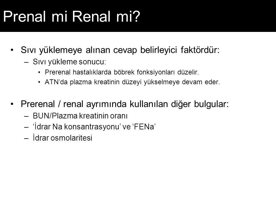 Prenal mi Renal mi.