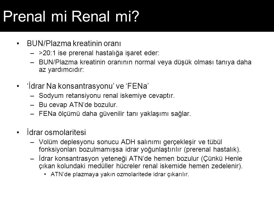 Prenal mi Renal mi? BUN/Plazma kreatinin oranı –>20:1 ise prerenal hastalığa işaret eder: –BUN/Plazma kreatinin oranının normal veya düşük olması tanı