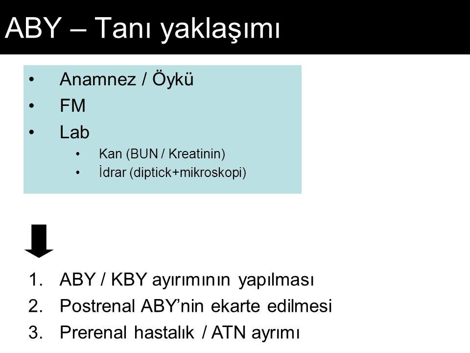 ABY – Tanı yaklaşımı Anamnez / Öykü FM Lab Kan (BUN / Kreatinin) İdrar (diptick+mikroskopi) 1.ABY / KBY ayırımının yapılması 2.Postrenal ABY'nin ekarte edilmesi 3.Prerenal hastalık / ATN ayrımı