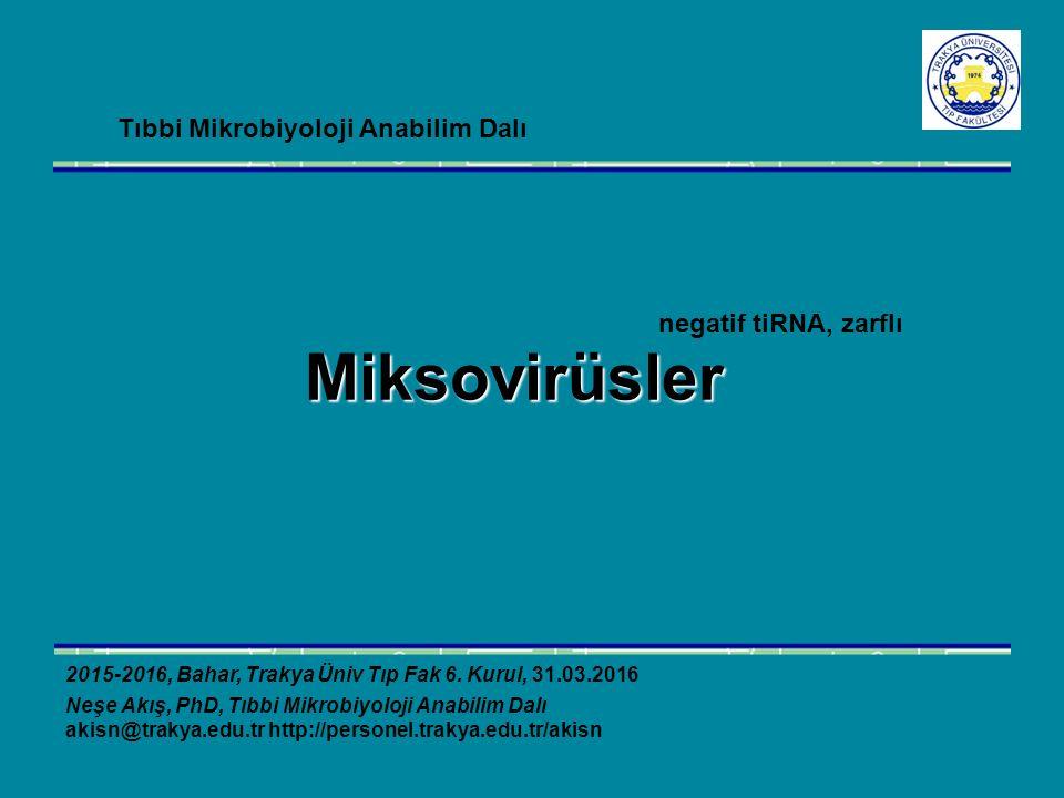 Miksovirüsler 2015-2016, Bahar, Trakya Üniv Tıp Fak 6. Kurul, 31.03.2016 Neşe Akış, PhD, Tıbbi Mikrobiyoloji Anabilim Dalı akisn@trakya.edu.tr http://