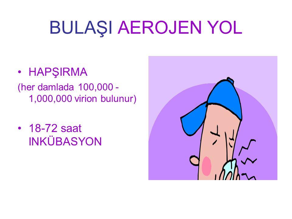 BULAŞI AEROJEN YOL HAPŞIRMA (her damlada 100,000 - 1,000,000 virion bulunur) 18-72 saat INKÜBASYON