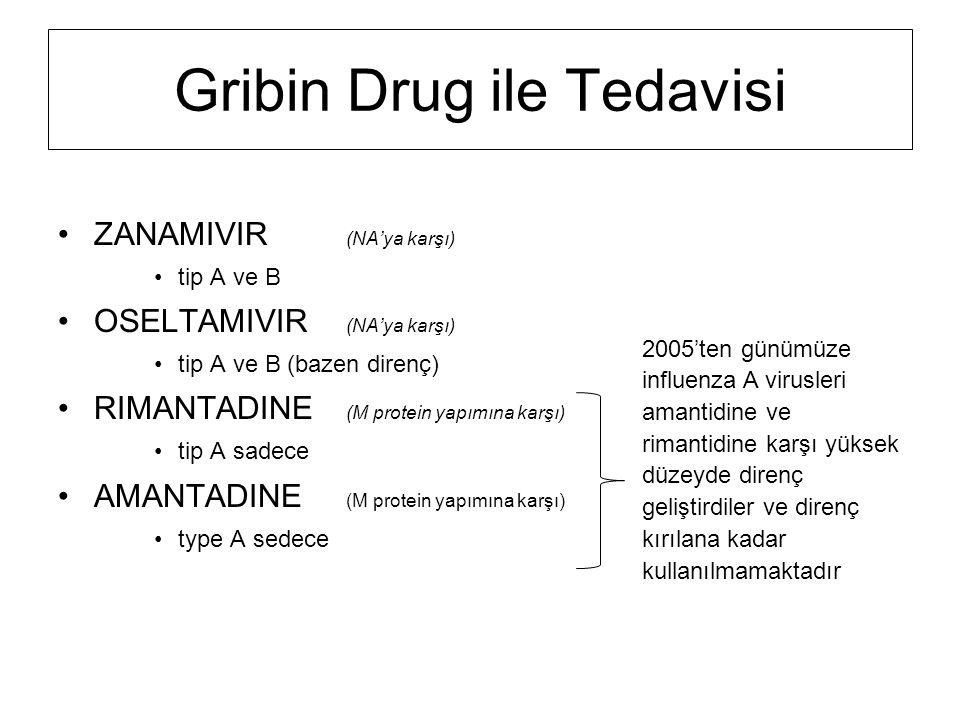 Gribin Drug ile Tedavisi ZANAMIVIR (NA'ya karşı) tip A ve B OSELTAMIVIR (NA'ya karşı) tip A ve B (bazen direnç) RIMANTADINE (M protein yapımına karşı)