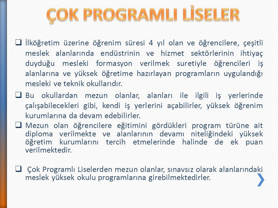  İlköğretim üzerine öğrenim süresi 4 yıl olan ve öğrencilere, çeşitli meslek alanlarında endüstrinin ve hizmet sektörlerinin ihtiyaç duyduğu mesleki