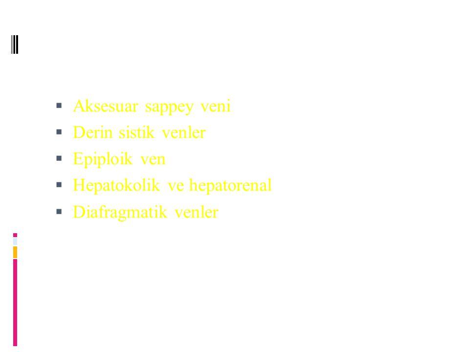 Aksesuar sappey veni  Derin sistik venler  Epiploik ven  Hepatokolik ve hepatorenal  Diafragmatik venler
