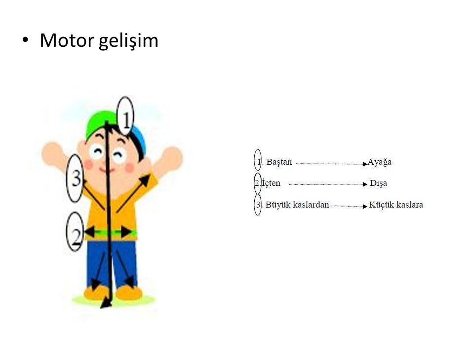 Ve iki genel alanda incelemek mümkündür: Büyük kas motor becerileri (Bedeni kullanma) Küçük kas motor becerileri (El ve ayağı kullanma)