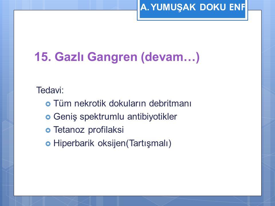 15. Gazlı Gangren (devam…) Tedavi:  Tüm nekrotik dokuların debritmanı  Geniş spektrumlu antibiyotikler  Tetanoz profilaksi  Hiperbarik oksijen(Tar